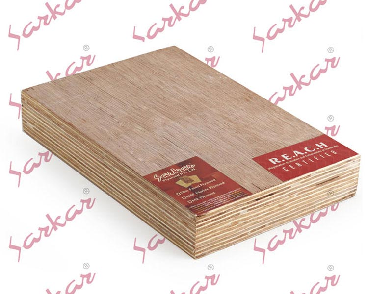 WBP Plywood (38mm)