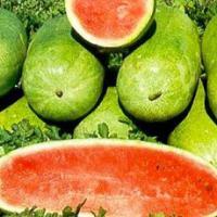 Charleston Gray Watermelon Seeds