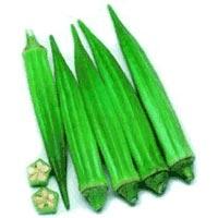 Parbhani Kranti Okra Seeds