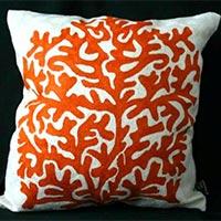 Coral Orange Cover