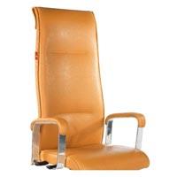 Premium Chairs
