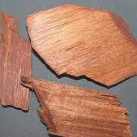 Vijaysar Wood