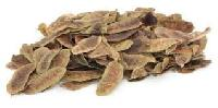 Organic Senna Pods (Organic Cassia Angustifolia)