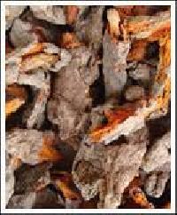 Organic Turmeric Roots (Organic Curcuma Longa)