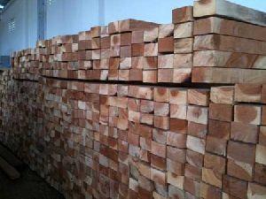 Cut Size Neem Wood 04