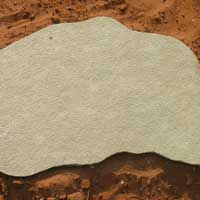 Yellow Lime Stepping Stone