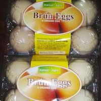 Brown Organic Eggs
