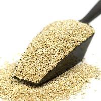Organic Quinoa Seeds