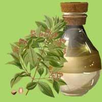 Sandalwood Oil Supplier