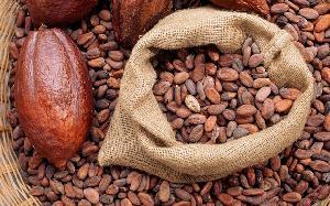 Cocoa Jute Bags (LMC-C-10)