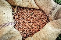 Cocoa Jute Bags (LMC-C-01)