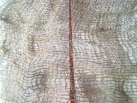Jute Fabric (LMC-BC-01)
