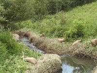 Jute Soil Saver/ Jute GEO Textile (LMC-08)