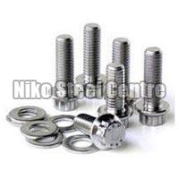 Steel Nuts