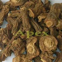 Indian Sarsaparilla Root