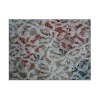 Raschelle Fabric