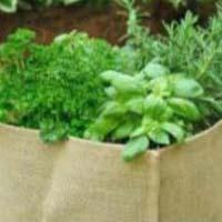 Herb Garden Bag
