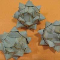 Sola Palm Arti Chowk