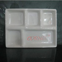 Rectangular Acrylic Dinner Plate