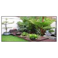 Terrace Garden Designing