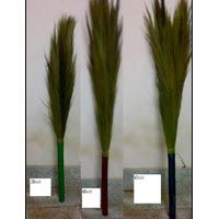 Grass Broom - 05