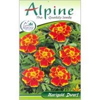 Dwarf Marigold Flower Seeds