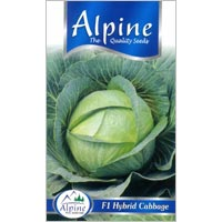 F1 Cabbage Seeds