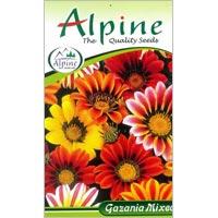 Gazania Mixed Flower Seeds