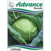 OP Cabbage Seeds