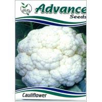 OP Cauliflower Seeds
