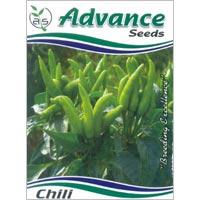 OP Green Chilli Seeds