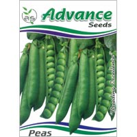 OP Green Peas Seeds