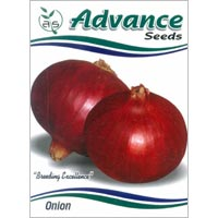 OP Red Onion Seeds