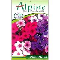 Phlox Mixed Flower Seeds
