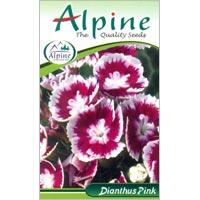 Pink Dianthus Flower Seeds