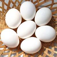 Chicken Eggs