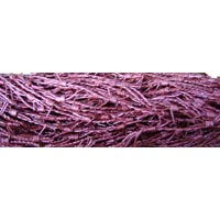 Metallic Barb Wire Leather Cord