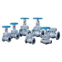 Audco Cast Steel Gate Globe Valve