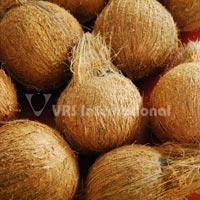 Semi Husked Coconuts-03