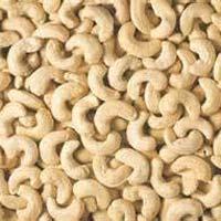 Cashew Kernels 05