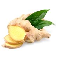 Fresh Ginger