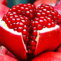 Angel Red Pomegranate
