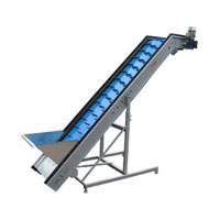 Potato Feeding Conveyor