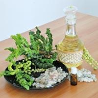 Boswellia Sacra Oil