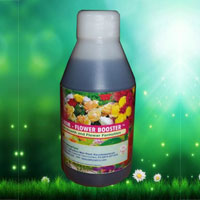 SAFS ROM – Flower Boosters