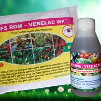 SAFS ROM – Verelac WP
