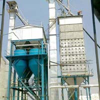 RICE DRYER AND PARABOILING