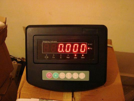 Platform Scale Indicator