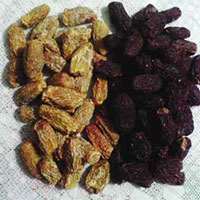 Dates Powder