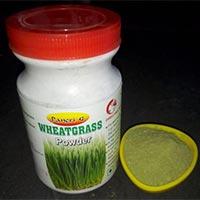 Wheatgrass Powder 02